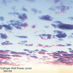 Eijjfinger_Wall_Power_Junior_364165_k.jpg