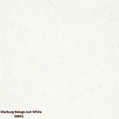 Marburg_Beluga_Just_White_56842_k.jpg